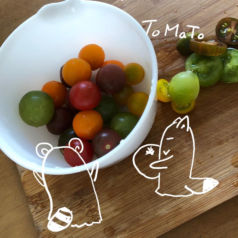 色とりどりのトマト☆トロピカル♪